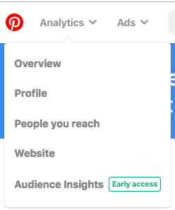 Pinterest Analytics dropdown menu