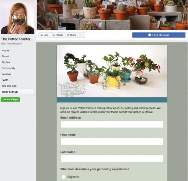 MailChimp Facebook sign up form