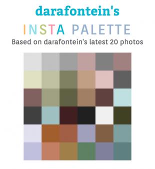 Dara Fontein's insta palette