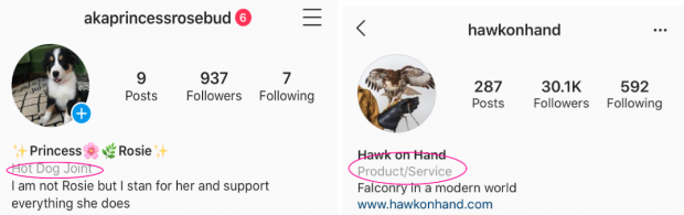 Screenshots of two Instagram profiles that indicate what type of business each account belongs to.