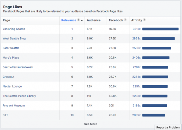 Facebook Audience Insights by Page Likes